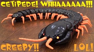 Kids' Toy Channel: Animal Planet's Giant Centipede Remote Control Toy Unboxing & Playtime