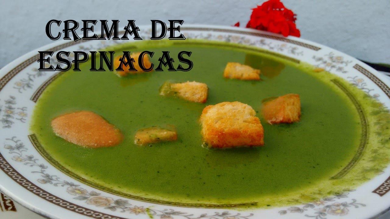 Como hacer crema de espinacas facil rapida rica for Canal cocina mexicana