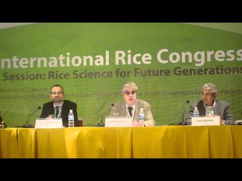 5. Global Rice Science Partnership (GRiSP) discussed at International Rice Congress