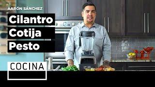 Cilantro - Cotija Pesto - Aarón Sánchez's Recipes
