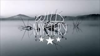 Calum Scott - Dancing On My Own (Tiësto Remix)