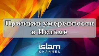 Эльмир Кулиев - Принцип умеренности в Исламе (Лекция)