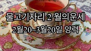 [별자리]물고기자리 2월운세 연애/직장/금전/연애