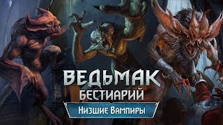 The Witcher 3. Бестиарий: низшие Вампиры (Гаркаин, Фледер и Эккима)