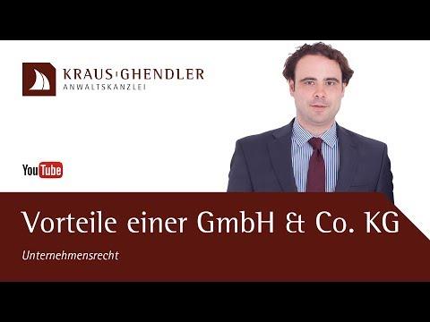 Vorteile der Gründung einer GmbH & Co. KG