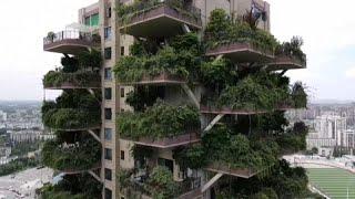 مشروع مدينة خضراء في الصين يتحول الى مشاهد من فيلم كارثي