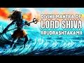 महाकल्याणकारी शिव मन्त्र  ॥ Divine Mantra Of Shiva -rudrashtakam ॥ Best Of Shivratri #ambey Bhakti video