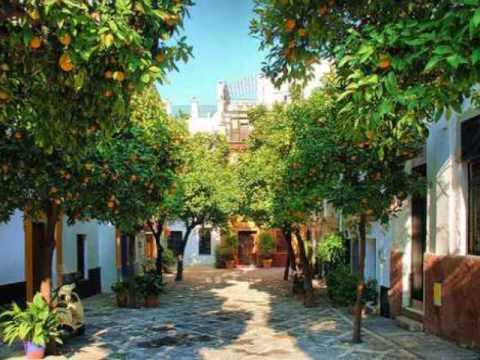 Alma Chill Out - Sevilla