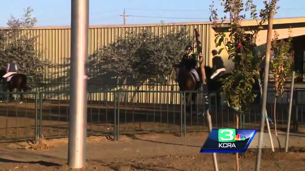 Murieta Equestrian Center Hosts International Horse Show