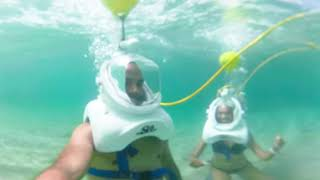 Sea Trek in Tropical Waters of Saint Lucia   Discover Your Wild Side!