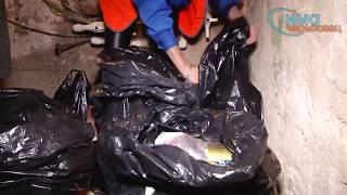 Эксперимент с накоплением мусора из подъездов