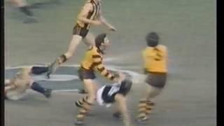 Carlton verses Hawthorn  1982 Prelim Final   VFL Park