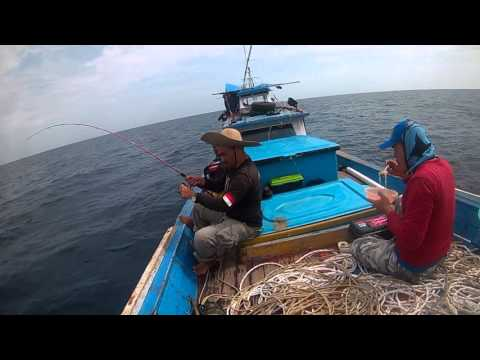 Jigging at aceh green job fish