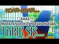 Murai Borneo Pancingan Murai Borneo Agar Emosi Dan Agar Bunyi Rumped Shama  Mp3 - Mp4 Download