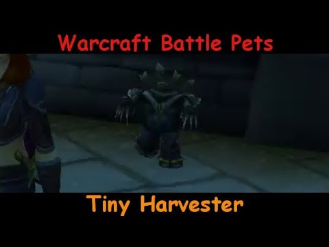 Tiny Harvester - Mechanical Cute Scarecrow Type Pet - battle pet - WoW  World of Warcraft