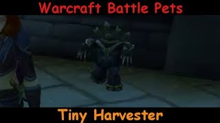 Tiny Harvester - Mechanical Cute Scarecrow Type Pet - battle pet - WoW World of Warcraft