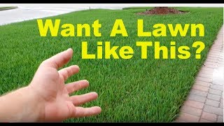 How To Fix An Ugly Lawn | For Beginners thumbnail