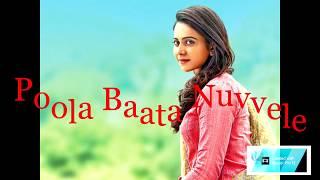 Nuvvele Nuvvele Full Song   Bellamkonda Sreenivas   Rakul Preet   DSP   Boyapati Srinu