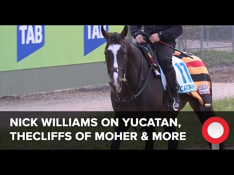 Nick Williams on Yucatan, Thecliffs Of Moher, Homesman, The Taj Mahal & Latrobe