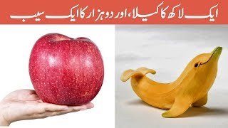 Top 10 World's Expensive Fruits - Amazing Pakistan in Urdu & Hindi