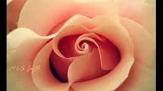 عيد الام -اهداء عيد ميلاد الام - Holiday Mother 2012