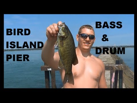 FISHING BIRD ISLAND PIER BASS & DRUM