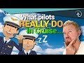 What Pilots REALLY DO in Cruise?!