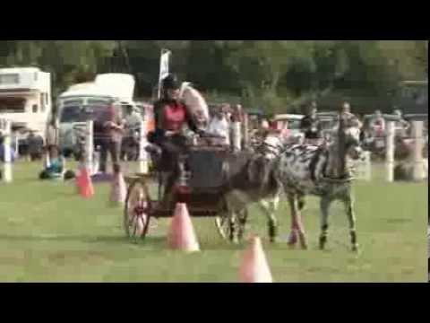 Uffington White Horse Show 2013
