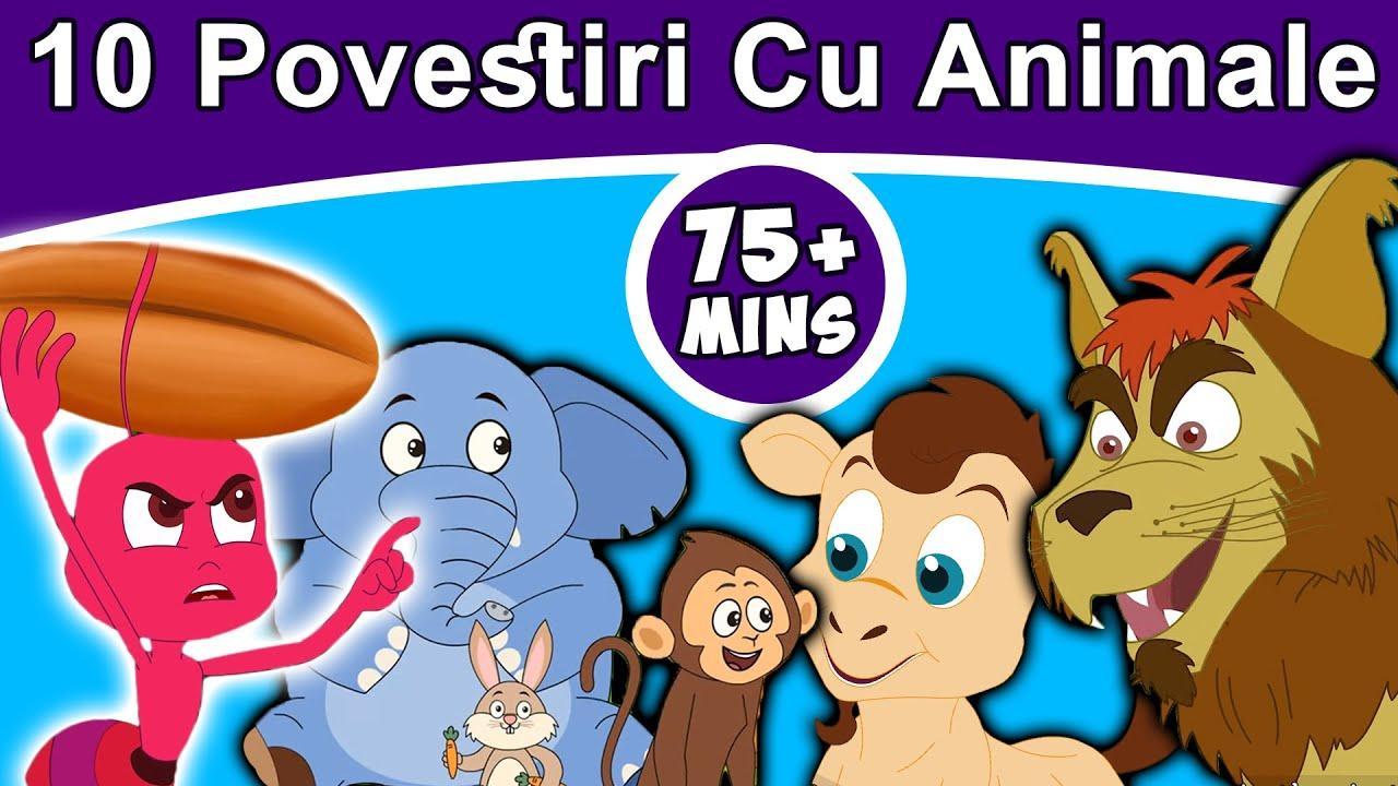 10 Povestiri Cu Animale 2019   Povești pentru copii   Desene animate   Basme În Limba Română