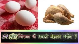 अंडे और चिकन में सबसे बेहतर कौन है/egg vs chicken protein /ande or chicken me se kon behtar hai