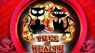 В погоне за продвинутыми и бонусами Дерево сокровищ игровых кошек