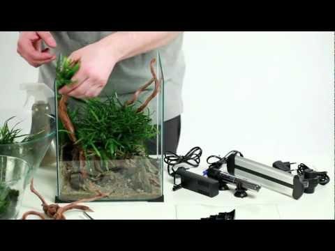 How to set up beautiful nano aquarium | DIVERSA |