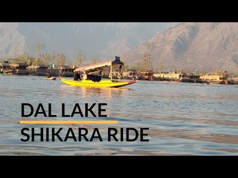 Shikara Cruise in Dal Lake