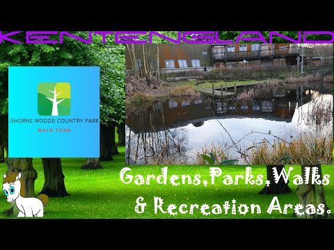 Shorne Woods Country Park: Walk Tour