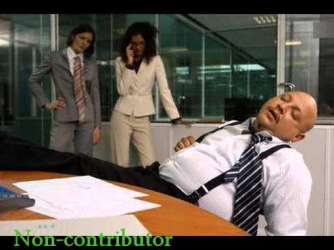 Contributor & Non contributor