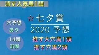 【競馬予想】 七夕賞 2020 予想