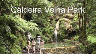 AZORES: Caldeira Velha Park - São Miguel Island