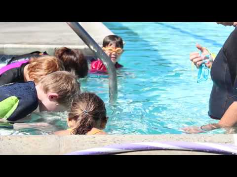 video:Seahorse Swim School - Explanation of Levels