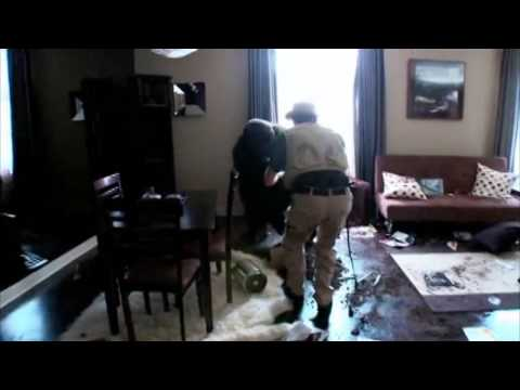 Jackass 3D - Gorilla Smashes Hotel Room Prank Full Scene