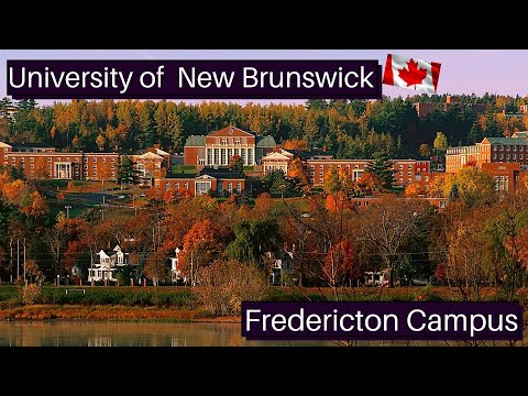 Driving Through University Of New Brunswick/Fredericton Campus/UNB Fredericton