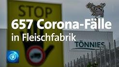 Corona-Ausbruch in Tönnies-Schlachtbetrieb in NRW