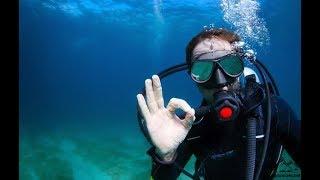 В мире морском - Водолазы Убийцы✔️ ☠️