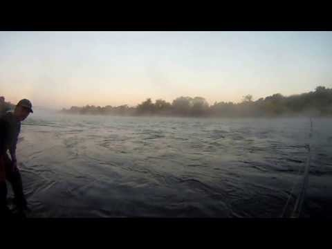 Salmon fishing on the American River
