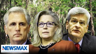 How much swamp can we drain? | Mark Meadows
