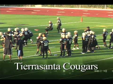 Tierrasanta cougars