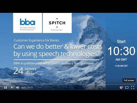 Webinar: Customer Experience for Banks (24.01.2017)