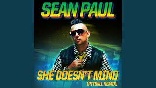 She Doesn't Mind (Pitbull Remix)