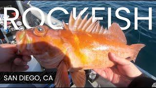 Fishing San Diego for Tasty Rockfish