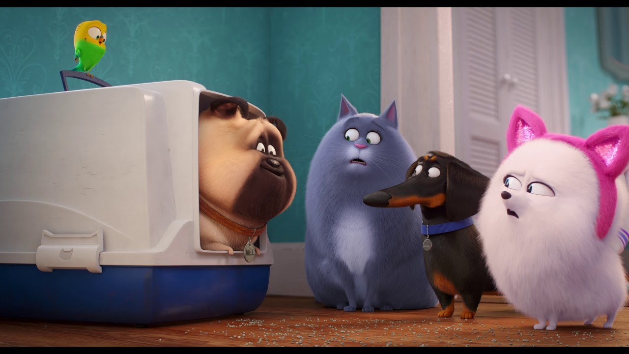 The Secret Life Of Pets 2 Singuri Acasă 2 2019 Trailer Subtitrat In Romană Youtube