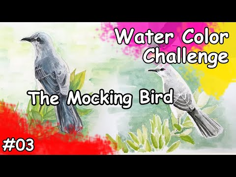 Mocking Bird Watercolor Painting Time Lapse   Water Color Challenge 03 from YouTube · Duration:  7 minutes 50 seconds